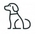 Dogs & Puppies for Rehoming